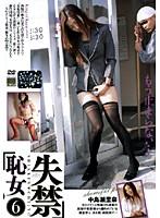 「失禁恥女6 中島瀬里奈 柳明日香」のパッケージ画像
