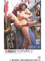 「強制露出マニアックス 2」のパッケージ画像