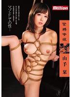 「緊縛令嬢 山手栞」のパッケージ画像