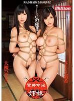 「緊縛令嬢姉妹 さとう遥希 大槻ひびき」のパッケージ画像