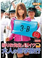 「おかず。企画祭り! 桜りお先生と素人男性がイク 大人の修学旅行」のパッケージ画像
