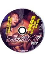 ブラックレイプ Vol.2 ダウンロード