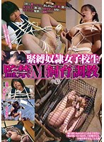 (86axdvd00165r)[AXDVD-165] 緊縛奴隷女子校生 監禁M飼育調教 ダウンロード