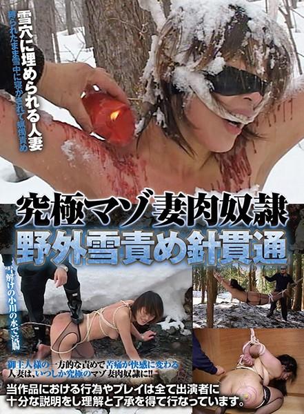 (86axdvd00212r)[AXDVD-212] 究極マゾ妻肉奴隷 野外雪責め針貫通 ダウンロード