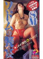 (86cs00452)[CS-452] SMソドムの饗宴 美鈴由香 ダウンロード