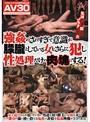 【AV30】強姦のされすぎで意識が朦朧としている女をさらに犯し性処理だけの肉の塊にする!