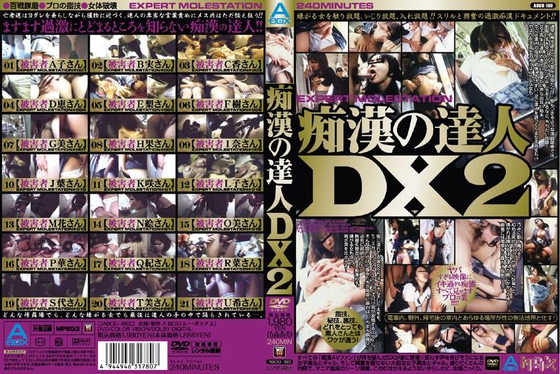 痴漢の達人DX 2