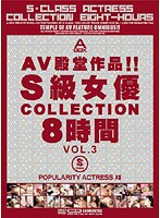 AV殿堂作品!!S級女優COLLECTION8時間 VOL.3