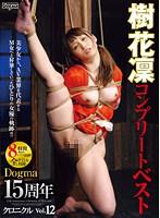 ドグマ15周年クロニクル Vol.12 樹花凜コンプリートベスト ダウンロード