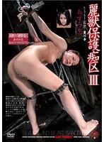 麗獣保護痴区III あずみ恋 ダウンロード