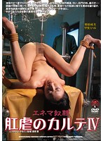 肛虐のカルテIV 栗原成美 甲斐ミハル ダウンロード