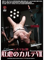 (advo00114)[ADVO-114] 肛虐のカルテVII 日和香澄 ダウンロード