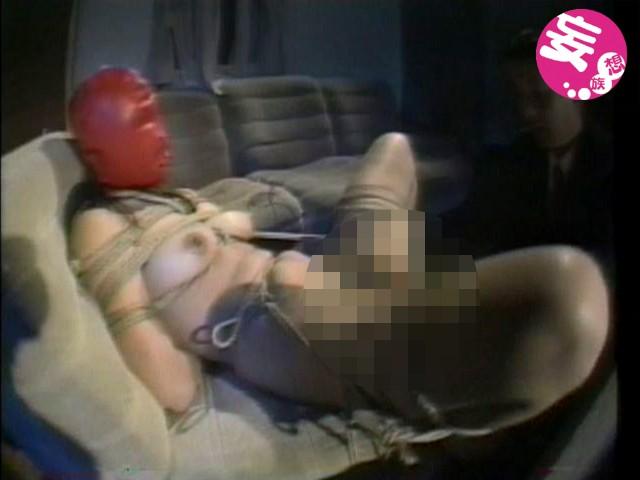 真夜中の隷嬢 白川麻耶 の画像8