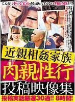 (aefx001)[AEFX-001] 近親相姦家族 肉親性行 投稿映像集 ダウンロード