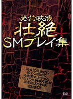 発禁映像 壮絶SMプレイ集 ダウンロード