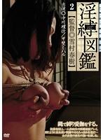 淫縛図鑑 2 ダウンロード