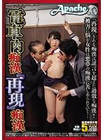 電車内痴漢『再現』痴漢【ap-709】