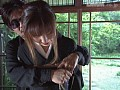 蛇縛アンソロジー1
