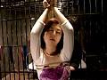 蛇縛の拷問折檻DX4 の画像9