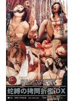 蛇縛の拷問折檻DX