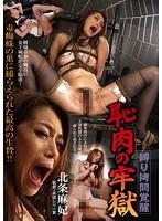 (bda00020)[BDA-020] 縛り拷問覚醒 恥肉の牢獄 北条麻妃 ダウンロード