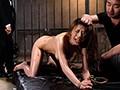 [BDA-031] 縛り拷問 奴隷市場の宴 其ノ貮