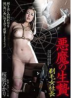 悪魔の生贄剃毛女社長桜庭ひかり【bda-093】