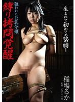縛り拷問覚醒狙われた巨乳令嬢稲場るか【bda-098】