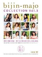 美人魔女COLLECTION Vol.3 ダウンロード