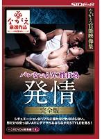 (bnsps00341)[BNSPS-341] ながえ官能映像集 バレないように性行為 発情 完全版 ダウンロード