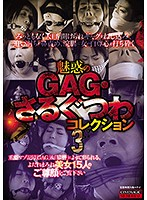 【画像】魅惑のGAG・さるぐつわコレクション3