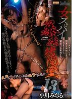 女スパイ暴虐拷問室13 小川みちる ダウンロード