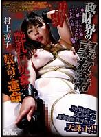 「政財界の裏女帝 艶乳巨尻女の数奇な運命 村上涼子」のパッケージ画像