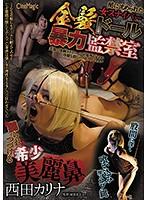 闇に沈められた女スナイパー 金髪ドール暴力監禁室 西田カリナ ダウンロード