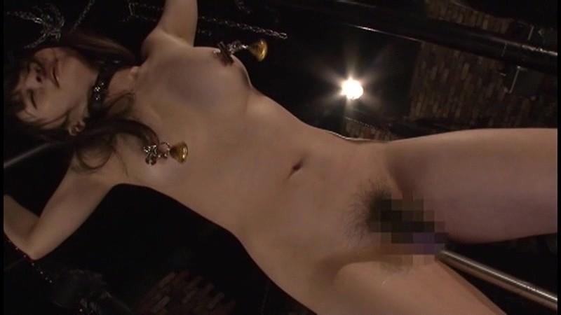 こぶ縄くいこみ触手棒責め 生殖器をしごかれ悶絶する女たち2 の画像4