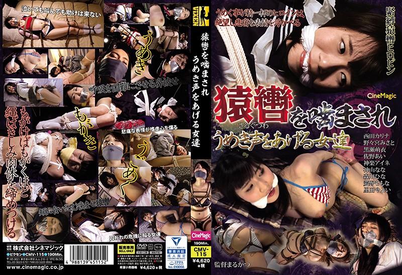 着衣の西田カリナ出演の監禁無料動画像。猿轡を噛まされうめき声をあげる女達