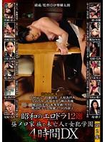 (csd00029)[CSD-029] 昭和のエロドラ12選 第2集 昼メロと未亡人と女犯学園 ダウンロード