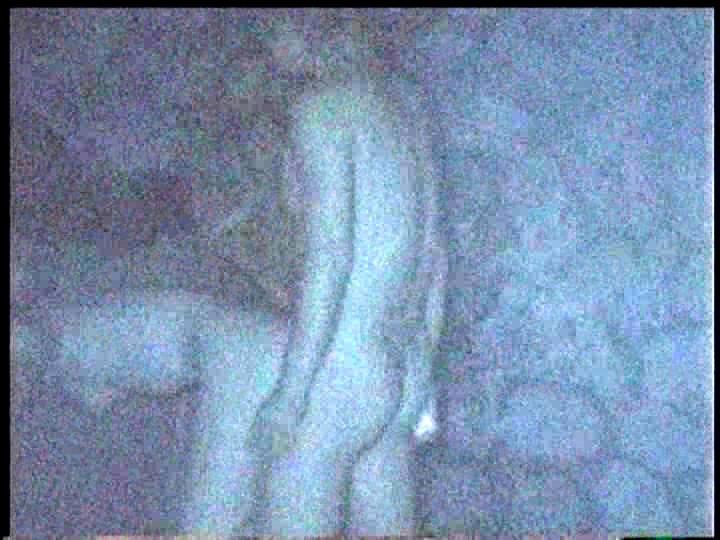 「赤外線盗撮シリーズ」Vol.8 CAR SEX の画像3