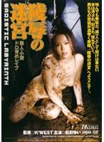 陵辱の迷宮 松野ゆい ダウンロード