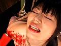 縄・ドラッグ M女優コレクションベスト 15