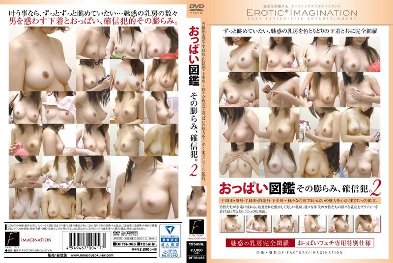 巨乳の素人女性の無料動画像。おっぱい図鑑 その膨らみ、確信犯!