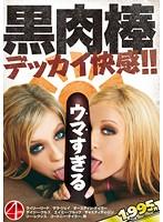 「黒肉棒 ~デッカイ快感!!~」のパッケージ画像