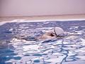 たくましい肉体の美女アスリート 本物競泳選手(現在スポーツインストラクター) E-BODY専属デビュー 武田真 9