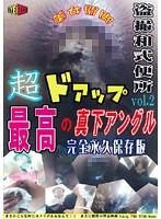 盗撮和式便所 超ドアップ!! 最高の真下アングル!! Vol.2 〜完全永久保存版〜 ダウンロード
