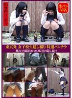 東京発 女子校生隠し撮り 特選パンチラ 32名 ダウンロード