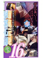 痴漢伝説16 ダウンロード