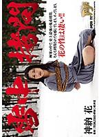 雪中拷問神納花【gtj-070】
