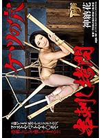 ケツの穴串刺し拷問神納花【gtj-075】