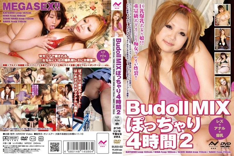 Budoll MIX ぽっちゃり4時間 2