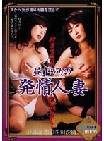 昼下がりの発情人妻 だって下半身が欲しがるから… 小島遊恋 生田沙織 ダウンロード